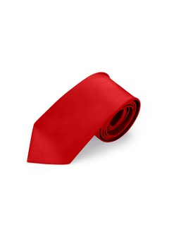 Azazie Boys Satin Neck Tie